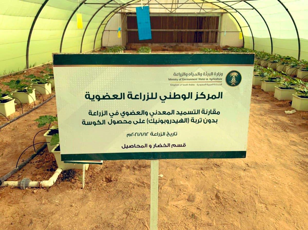 من برامج المركز الوطني للزراعة العضوية