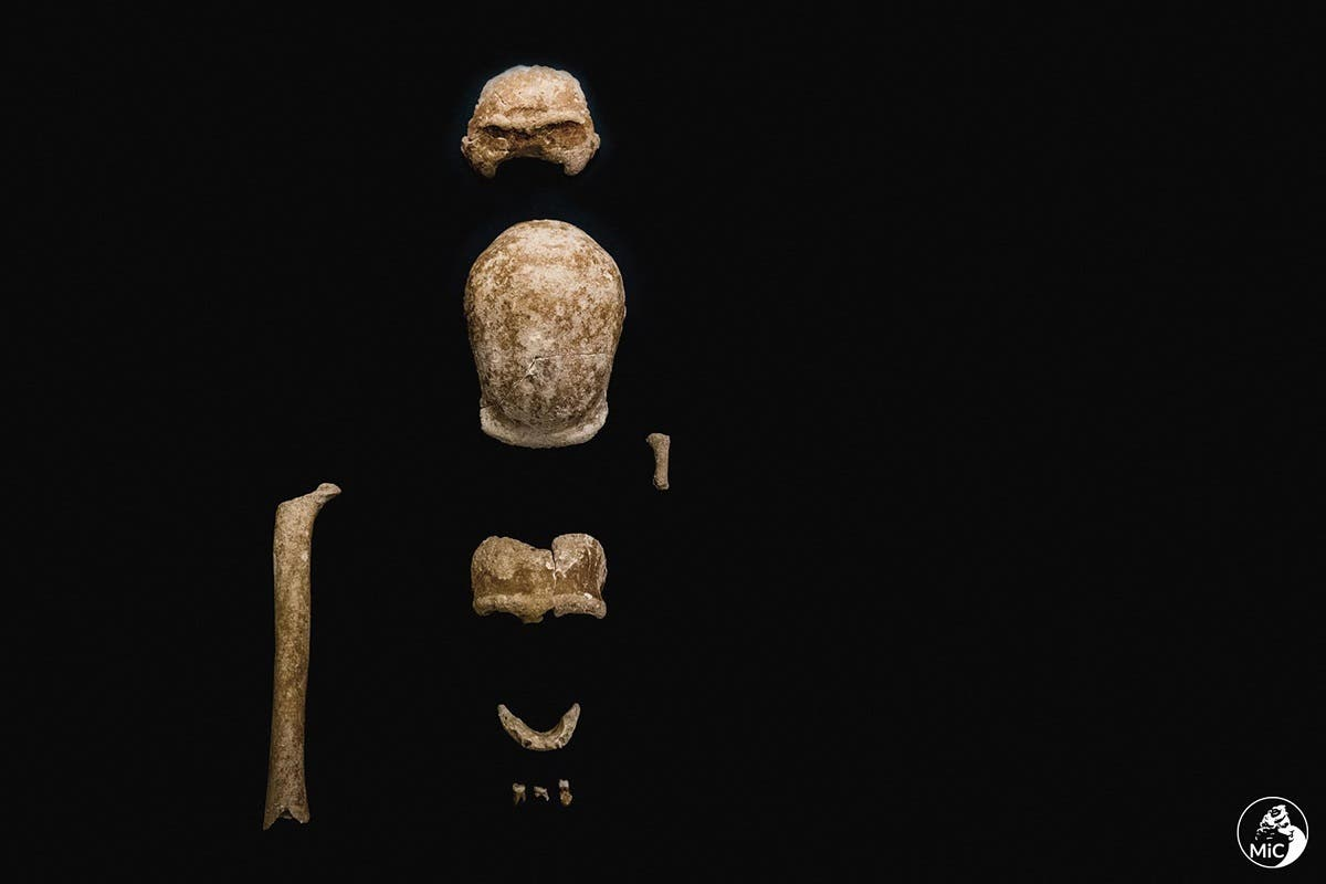 This undated photo handout on May 8, 2021 by the Italian Culture Ministry shows fossilized remains of nine Neanderthals which have been found in the Guattari Cave in San Felice Circeo, south of Rome. (Handout/Italian Ministry of Culture/AFP)