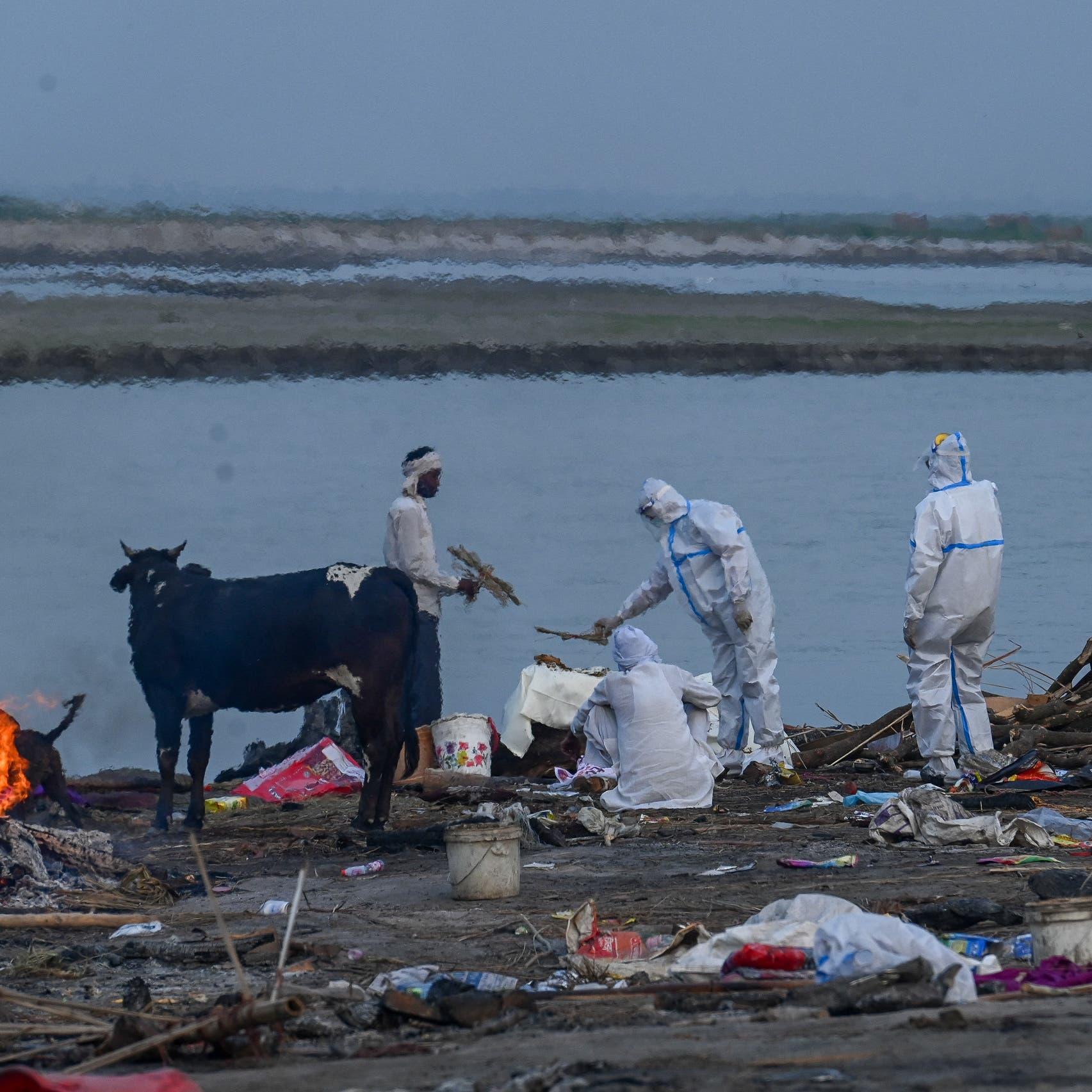 صور.. جثث عائمة لوفيات كورونا بنهر في الهند