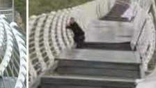 وڈیو : چینی سیاح کو پہاڑی علاقے میں پل پر چلنا مہنگا پڑ گیا !