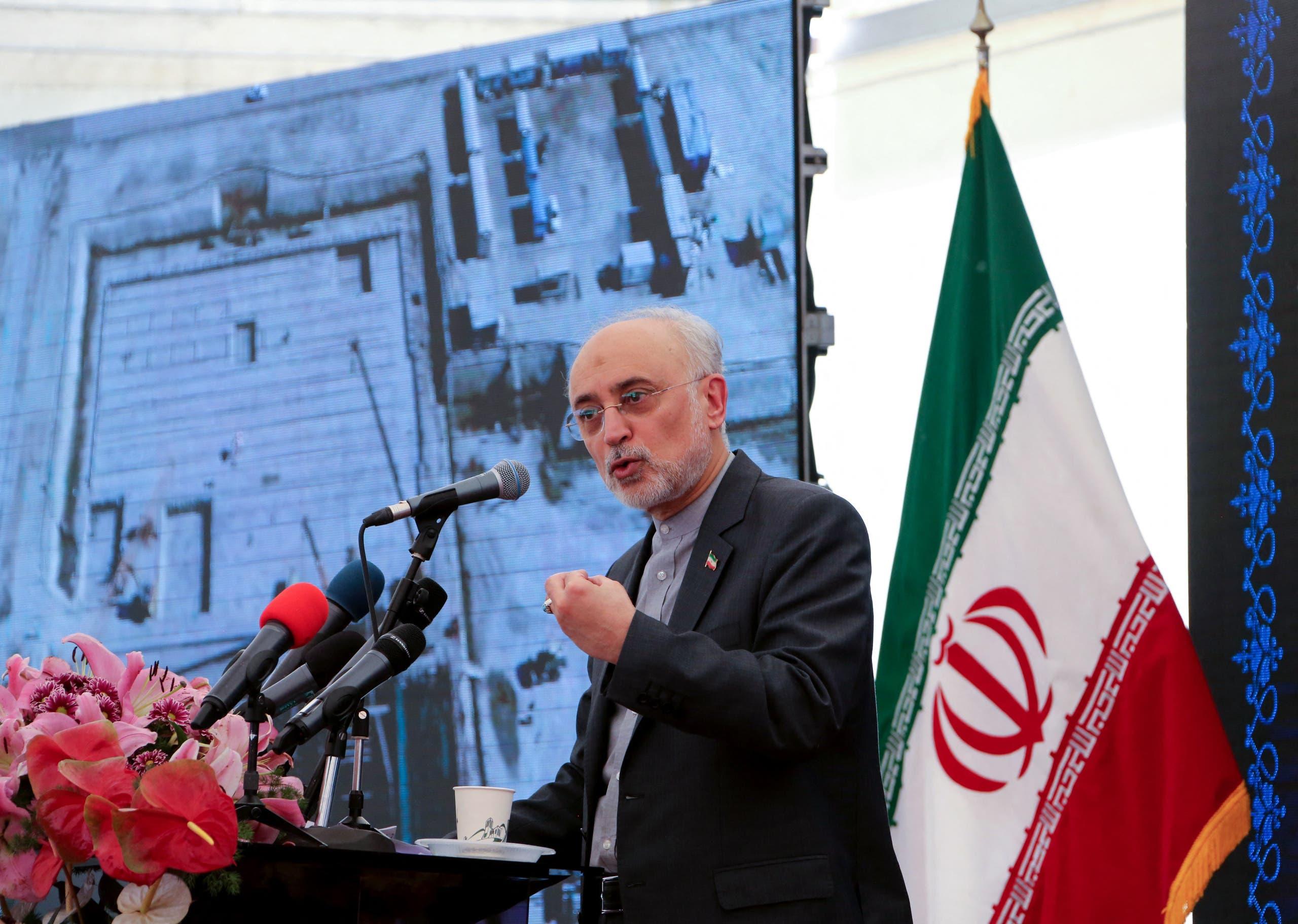رئيس الوكالة الإيرانية للطاقة الذرية، ووزبر الخارجية السابق علي أكبر صالحي (أرشيفية- فرانس برس)