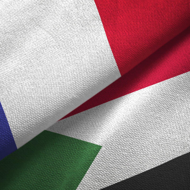 باريس تستضيف الاثنين قمة حول التحول الديمقراطي في السودان