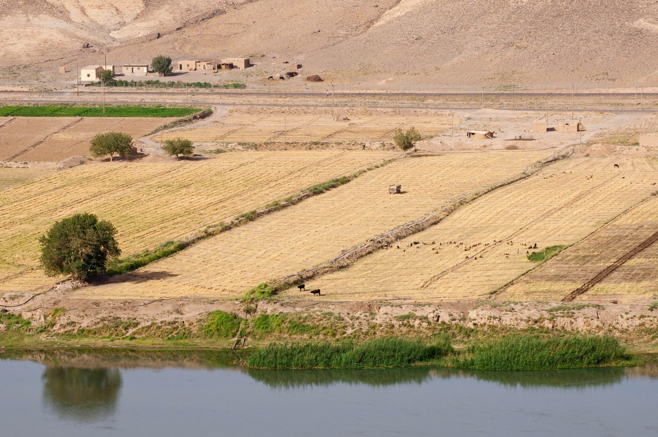نهر الفرات من الناحية السورية (istock)