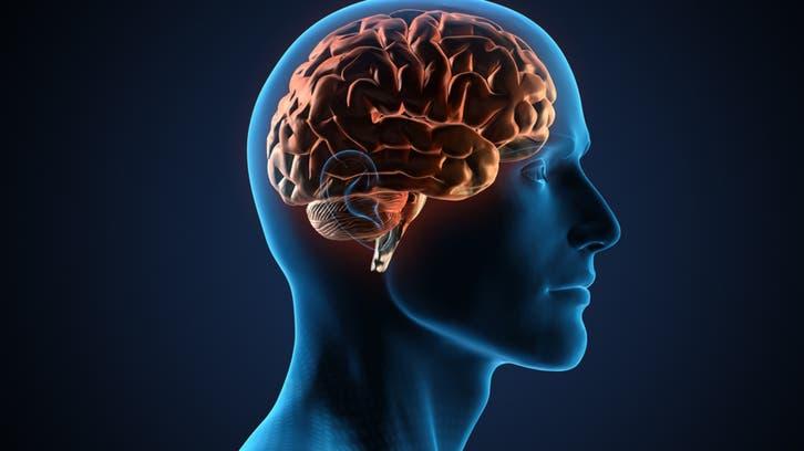دراسة صادمة.. كورونا قد يتسلل إلى الدماغ ويأكل أنسجته