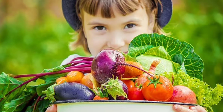 الدراسة تحذر من الاعتماد الكامل على النظام النباتي