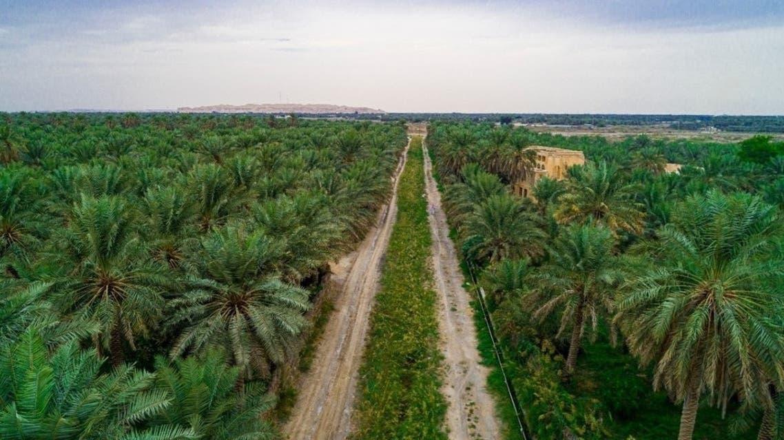 KSA: Natural Beauty