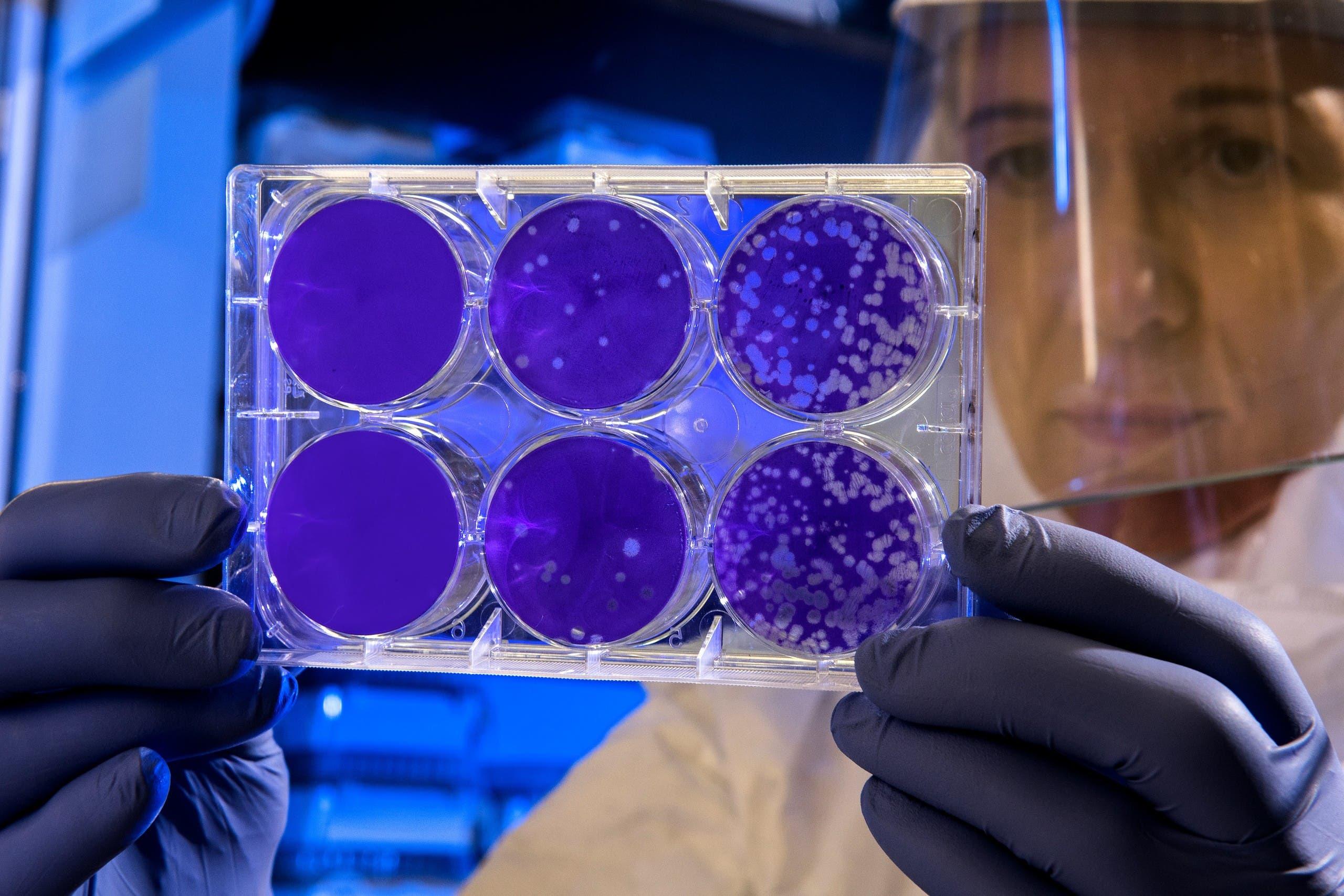 Scientist in a lab. (Unsplash, CDC)