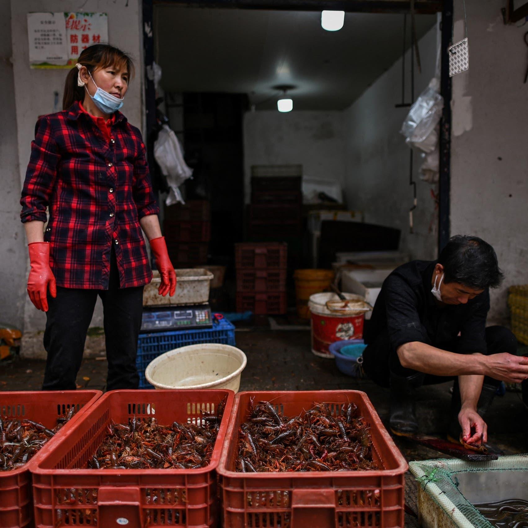 47 ألف حيوان حي كان مطروحاً في أسواق ووهان قبل كورونا