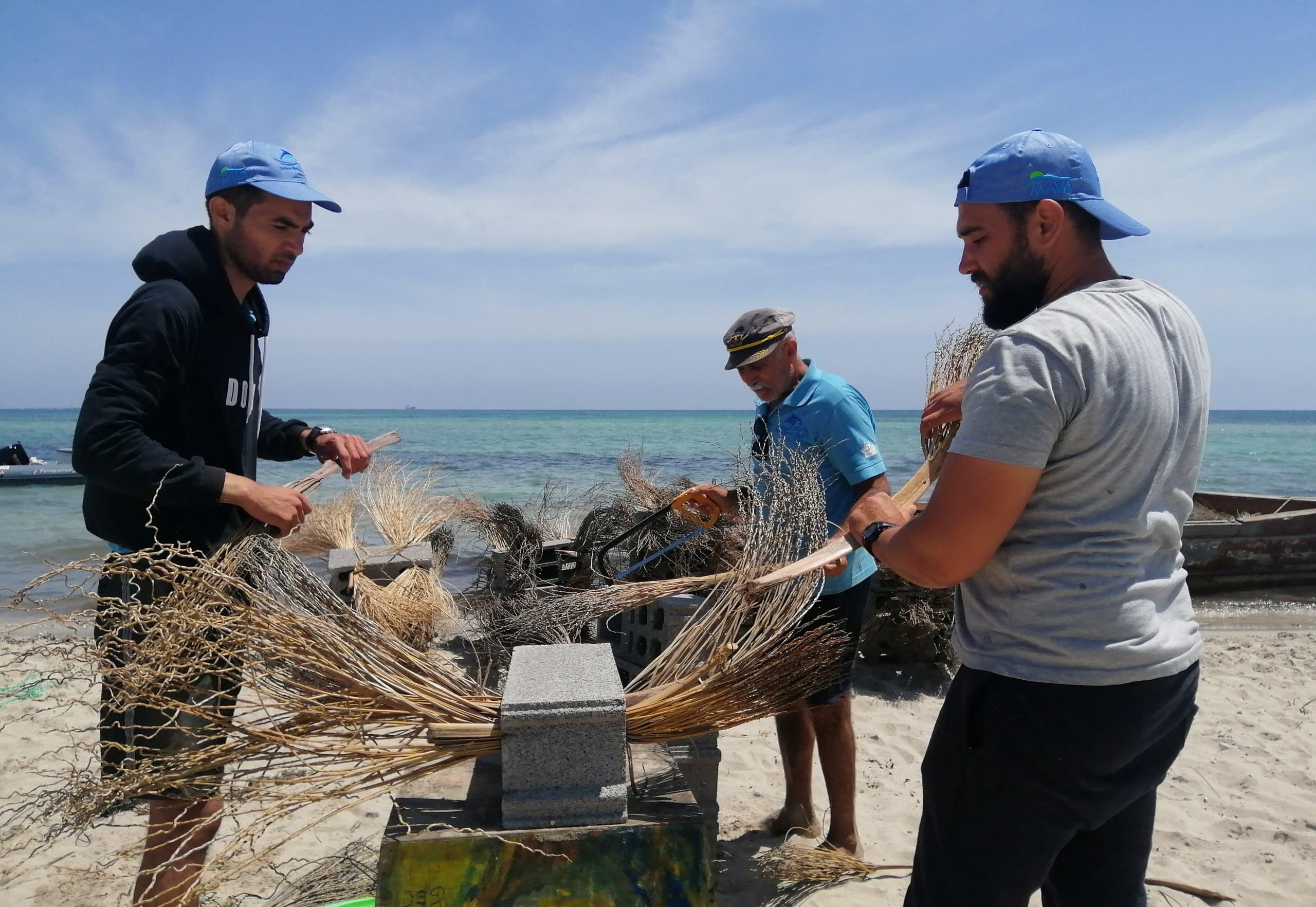 من عملية زرع الشعاب الصناعية في قاع البحر بتونس