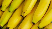 Carrefour says workers found cocaine in banana boxes