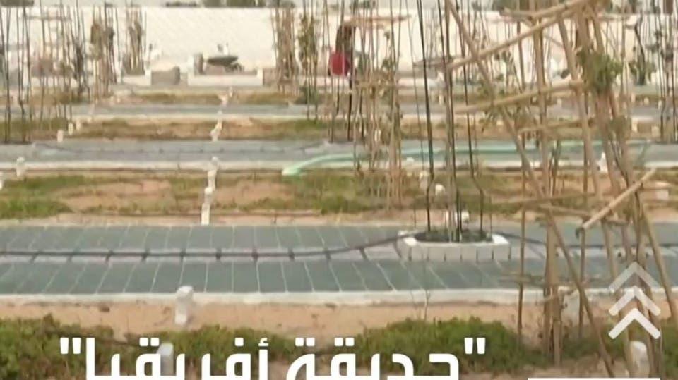 مقبرة المهاجرين في تونس .. امتلأت قبل أن تفتتح