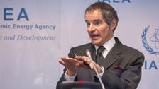 Nuclear deal must await new Iran government, IAEA chief tells La Repubblica