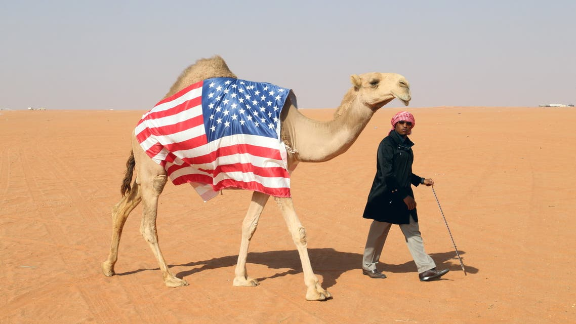 American invests in Saudi camels beauty contest American Hassan Joseph, walks with his camel, Victoria before its participation in the King Abdulaziz Camel Festival in southern Sayahid, Saudi Arabia, December 22, 2020. (File photo: Reuters)