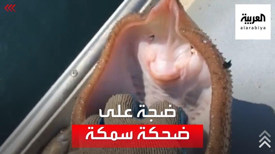 قام بدغدغتها أم بتعذيبها، مقطع فيديو يثير الجدل، لصياد أميركي قام بدغدغة سمكة