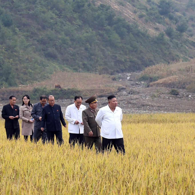 """شاهد.. كيم معترفاً: كوريا الشمالية تواجه نقصاً """"حاداً"""" في الغذاء"""