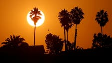 Pacific Northwest heat wave 'virtually impossible' without climate change: Research