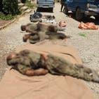 سپاه مدعی «شناسایی و انهدام» یک «تیم پنج نفره ضد انقلاب» در کردستان شد