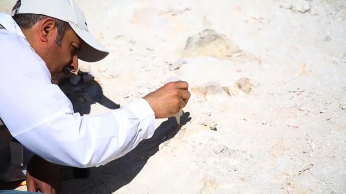 فريق العمل خلال اكتشافه بقايا الحوت
