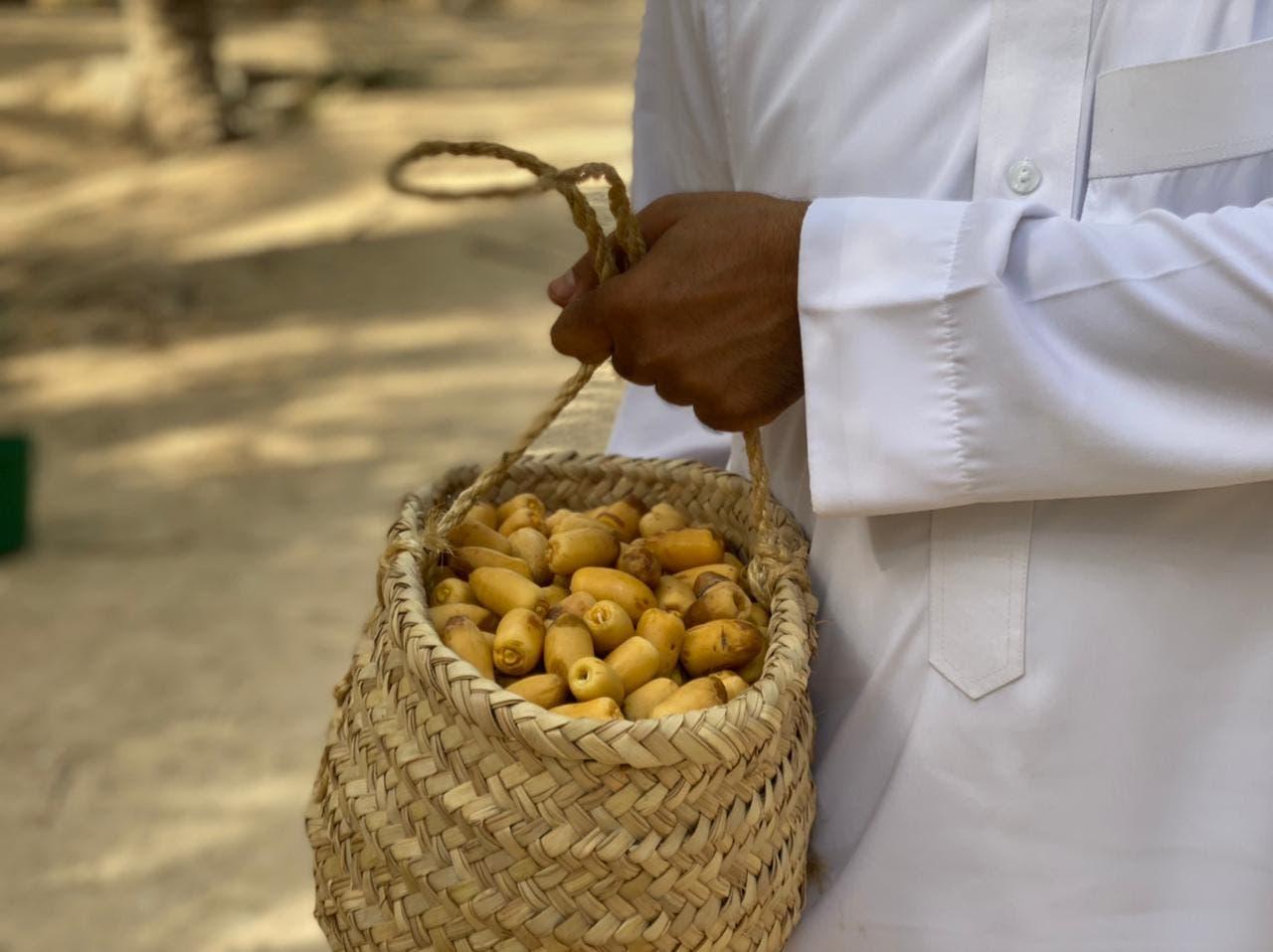 تازہ نمی سے بھرپور [رطب] کھجوروں [المعروف ڈوکے] اتارنے کے عمل کو مقامی زبان میں 'خراف' کہا جاتا ہے۔