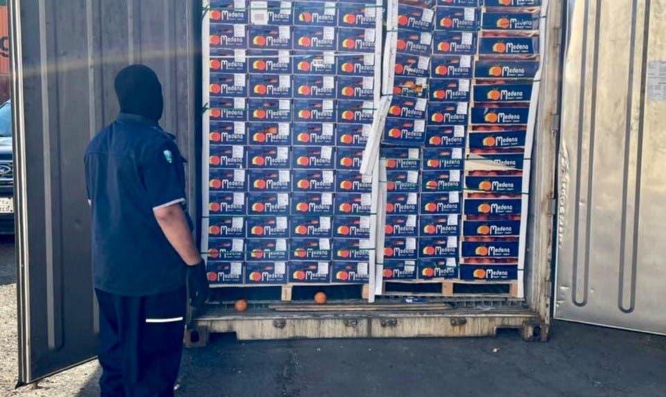 كمية البرتقال التي تم ضبطها