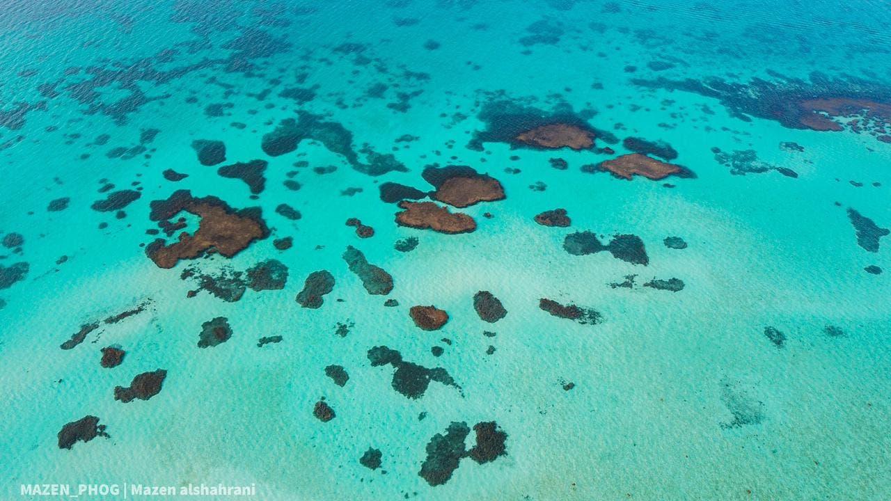 المياه الصافية والشعاب المرجانية