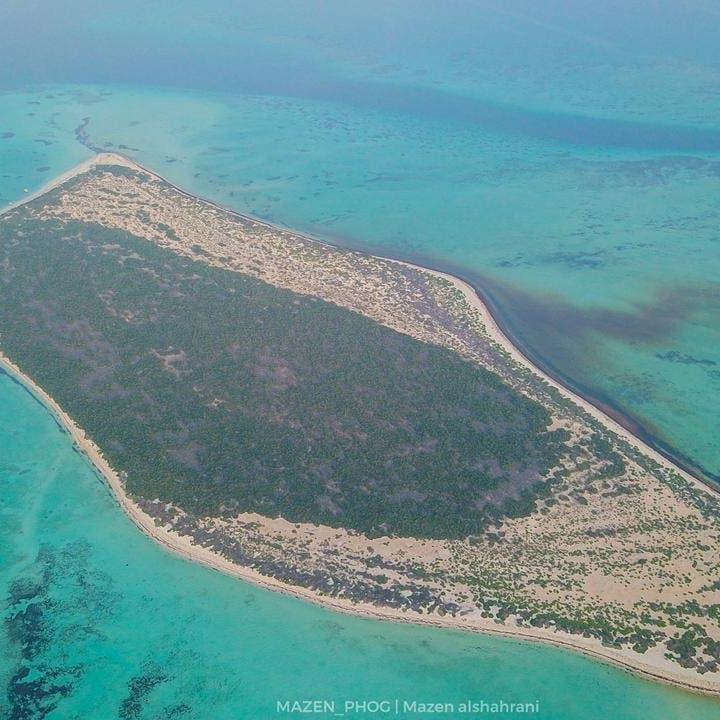 جزيرة سعودية تجمع بين الشعب المرجانية وشواطئها البكر