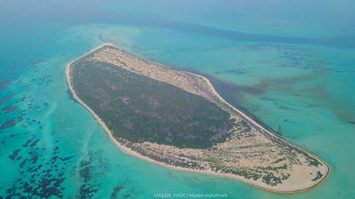مرجانی چٹانوں اور دلکش ساحل کا حسین امتزاج سعودی جزیرہ
