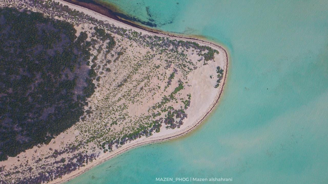 تجمع الطبيعة والجمال في جزيرة ماركا
