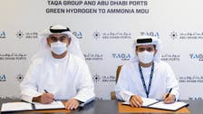 TAQA Group and Abu Dhabi Ports planning 2 GW green hydrogen to ammonia project