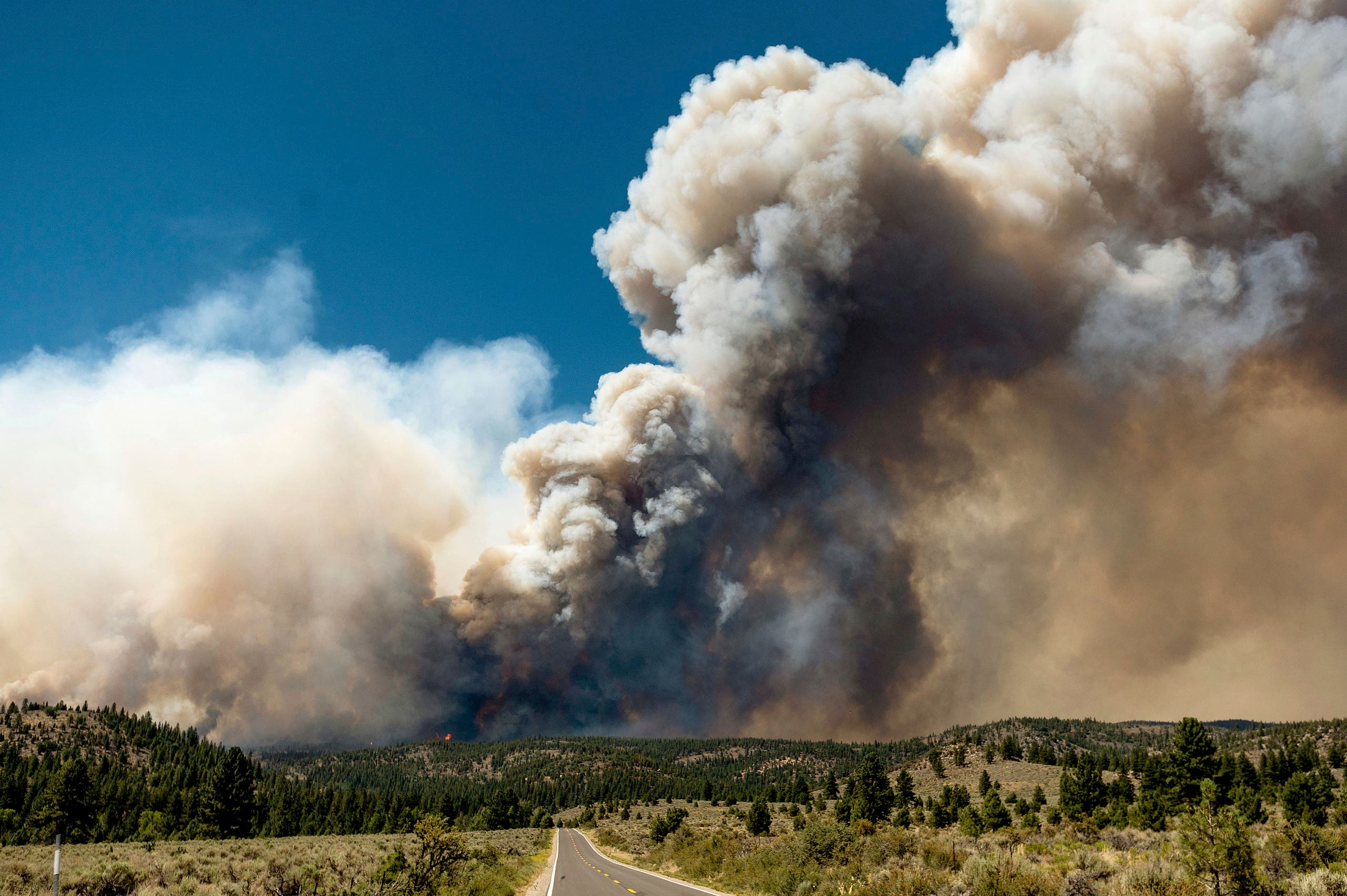 A plume of smoke rises from the Sugar Fire, part of the Beckwourth Complex Fire, burning in Plumas National Forest, Calif., on Thursday, July 8, 2021. (AP)
