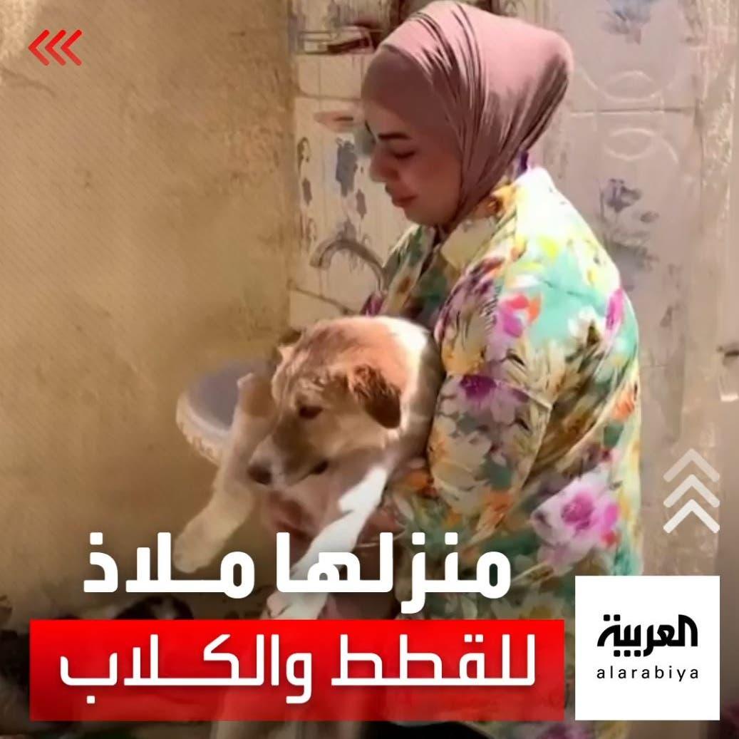 عراقية تساعد القطط والكلاب الضالة بإنقاذهم من التشرد والأمراض