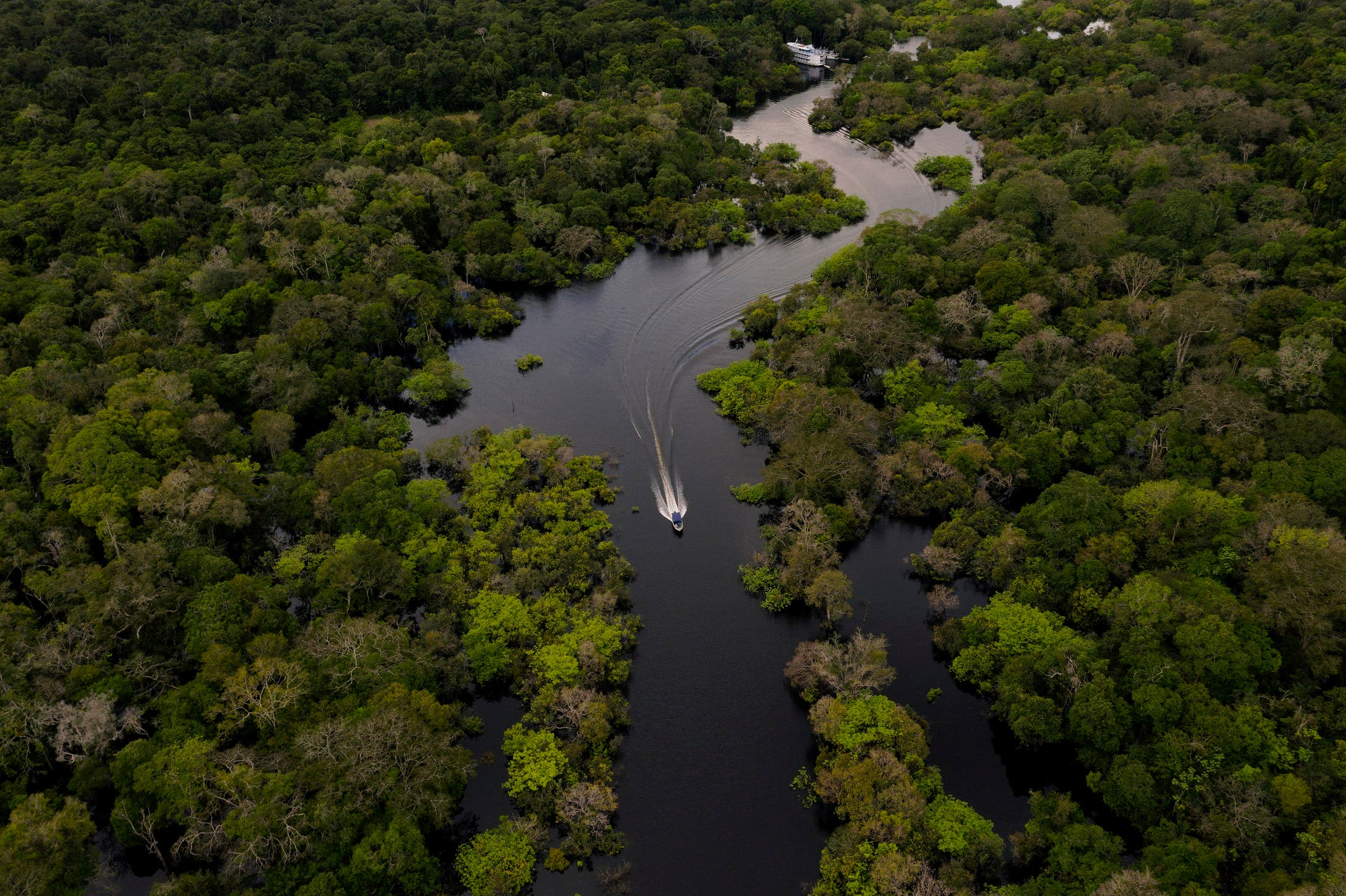 Aerial view showing a boat speeding on the Jurura river in the municipality of Carauari, in the heart of the Brazilian Amazon Forest, on March 15, 2020. Many young people in the heart of the Amazon rainforest choose their community over the city. (Stock image)