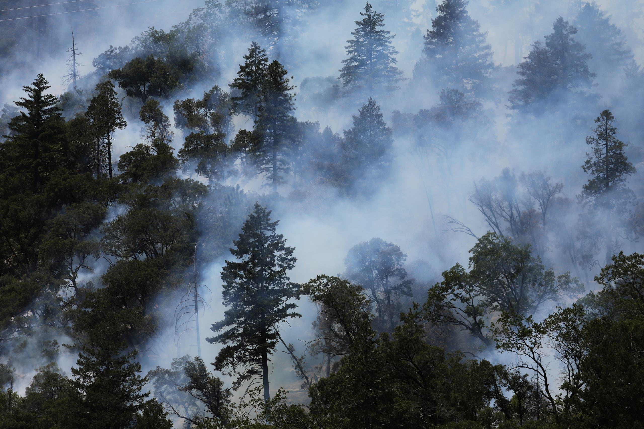 Trees smolder as the Dixie Fire grows in Plumas National Forest, California, US, July 15, 2021. (Reuters)