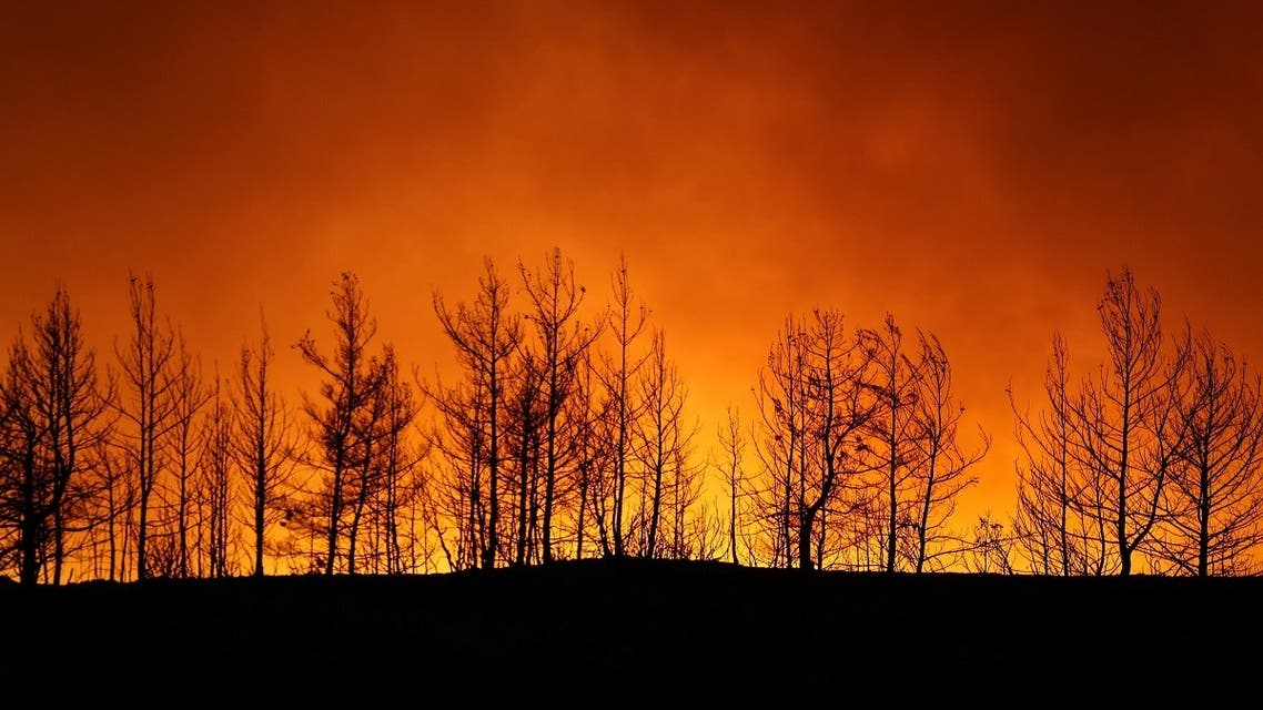 A forest fire burns near the town of Manavgat, east of the resort city of Antalya, Turkey, on July 29, 2021. (Reuters)