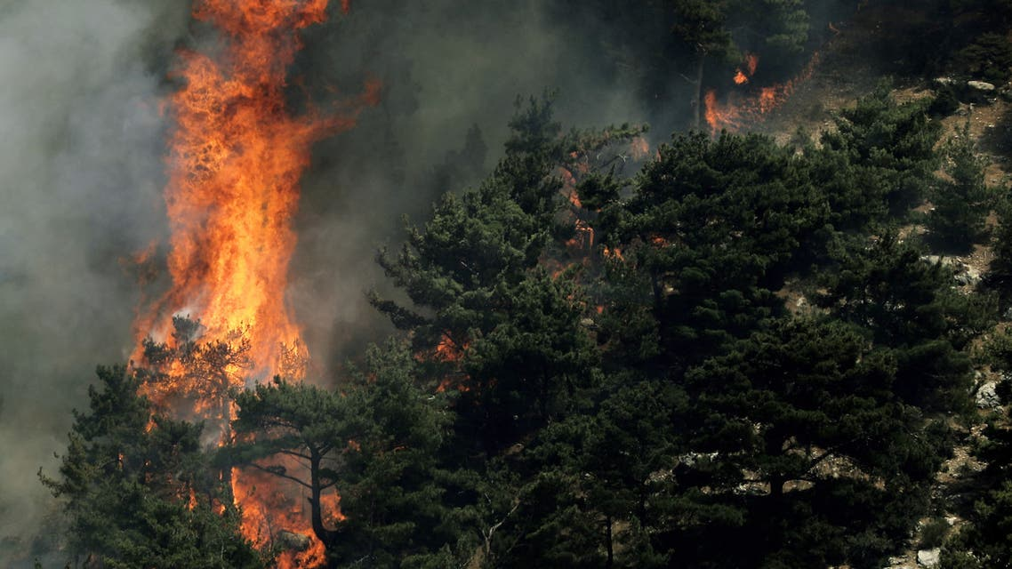 Wildfires spread in the forests of the Qubaiyat in northern Lebanon, July 29, 2021. (AFP)