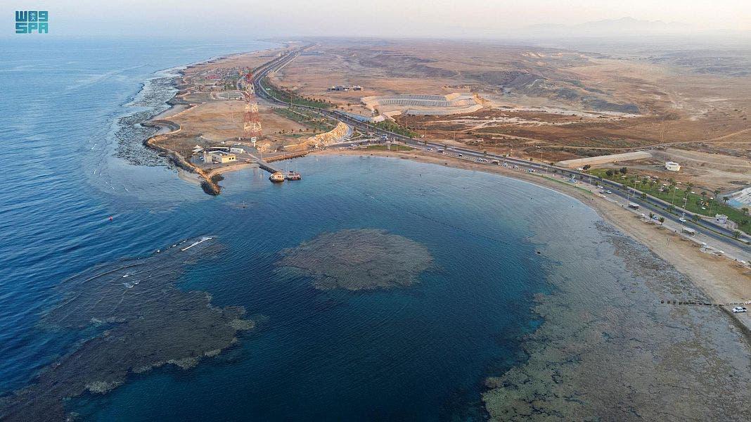 ساحل الوجه 3