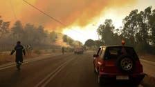 Dozen homes burn, five hospitalized in forest fire near Greece's Patras