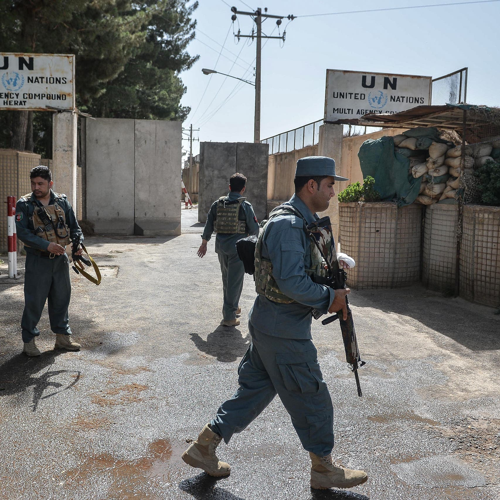 Taliban and Afghan forces clash again on outskirts of Herat city