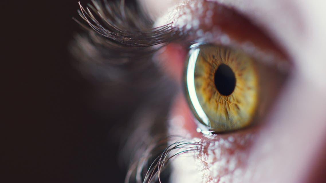 شبكية العين (آيستوك)