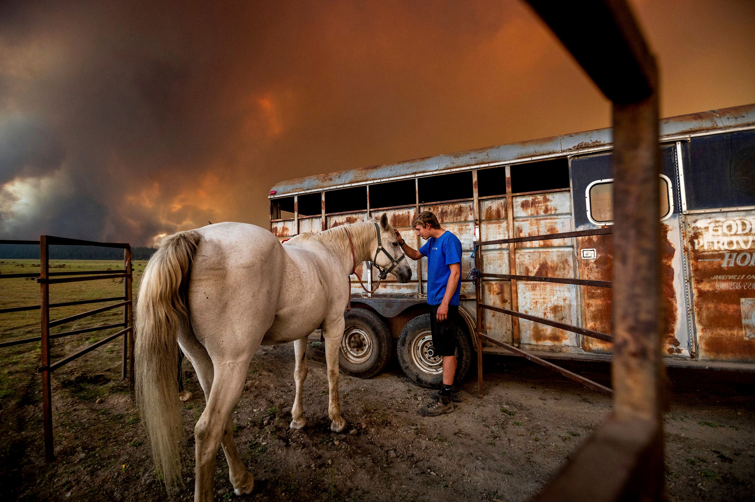 Hunter McKee pets Rosy after helping evacuate the horse to the edge of Lake Almanor as the Dixie Fire approaches Chester, California, on Tuesday, Aug. 3, 2021. (AP)