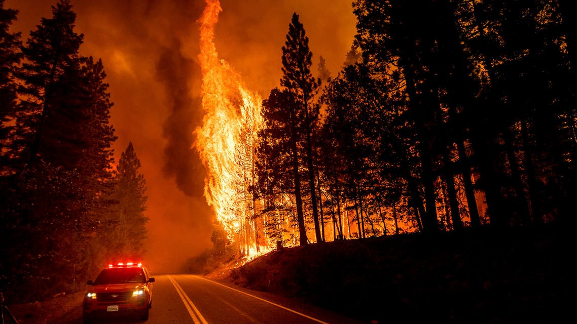 Flames leap from trees as the Dixie Fire jumps Highway 89 north of Greenville in Plumas County, California, on Tuesday, Aug. 3, 2021. (AP)