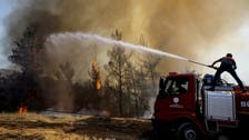 Turkey spent only fraction of forest protection budget before wildfires erupted