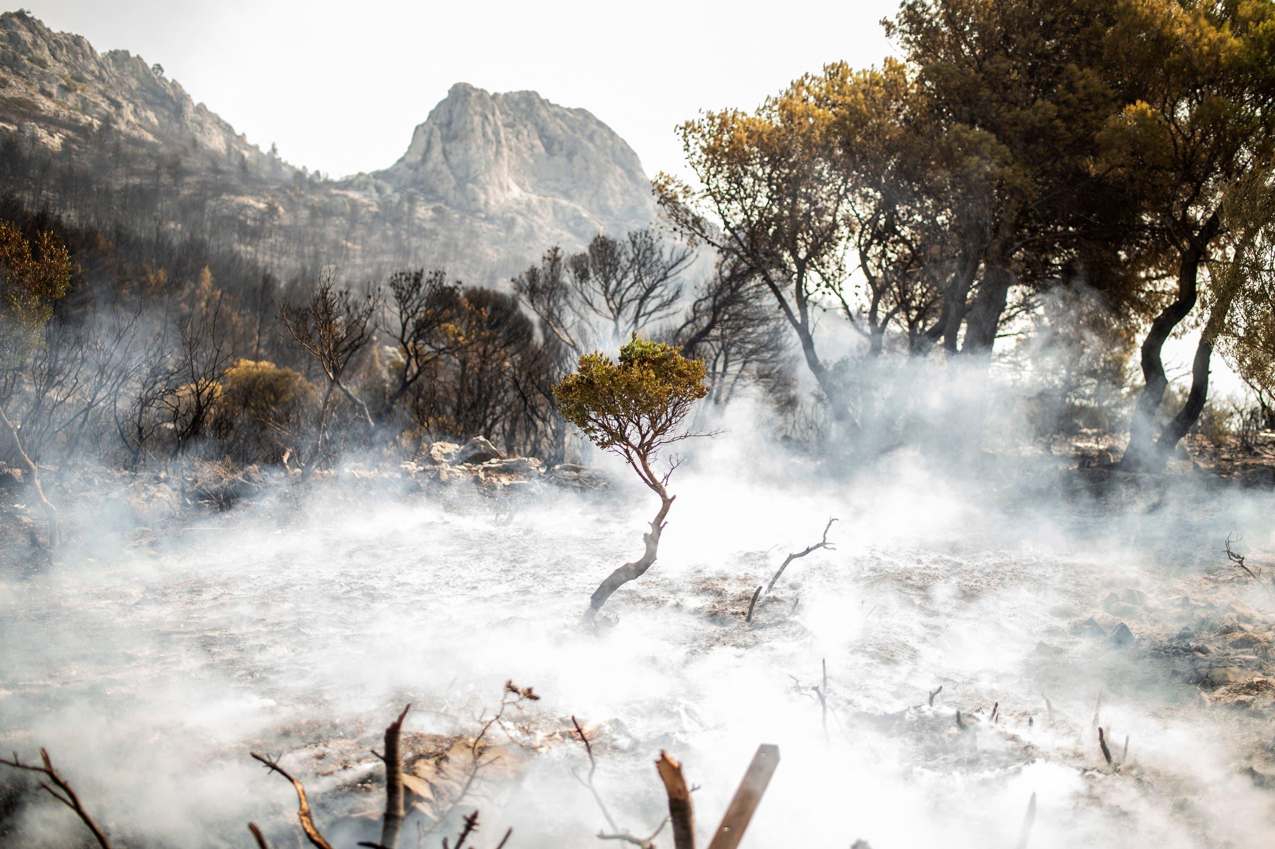 الحرائق في شمال اثينا