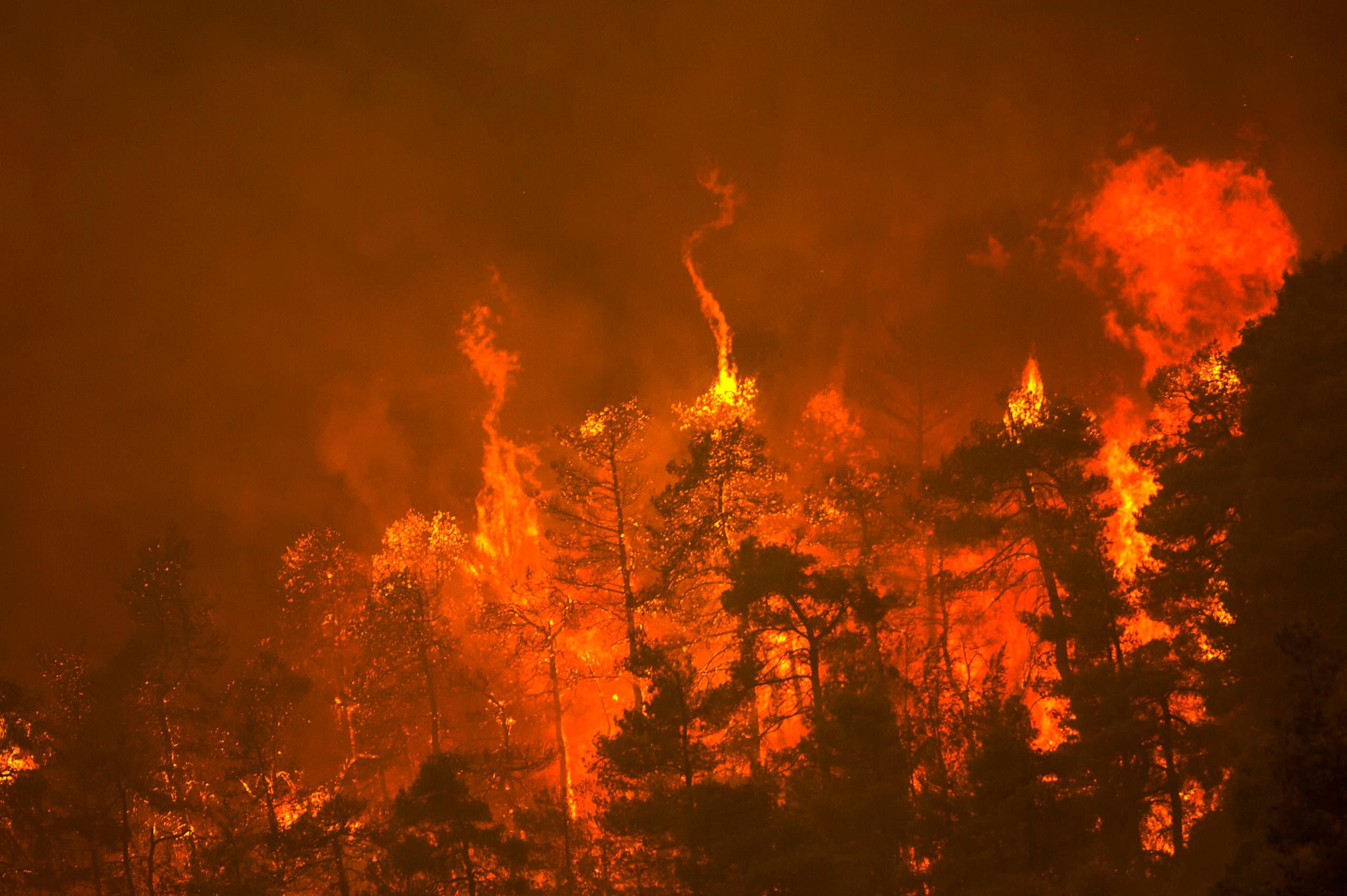 الحرائق في جزيرة إيفيا