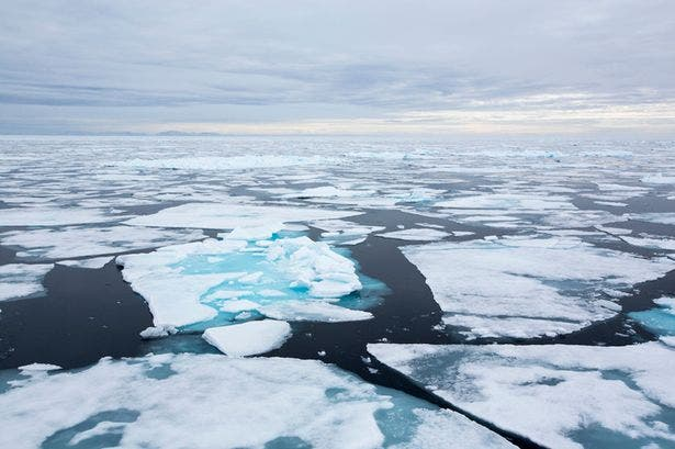 الجليد قد يخفي تحته الوباء القادم