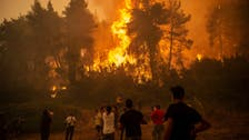 People evacuated as new wildfire hits island in Greece