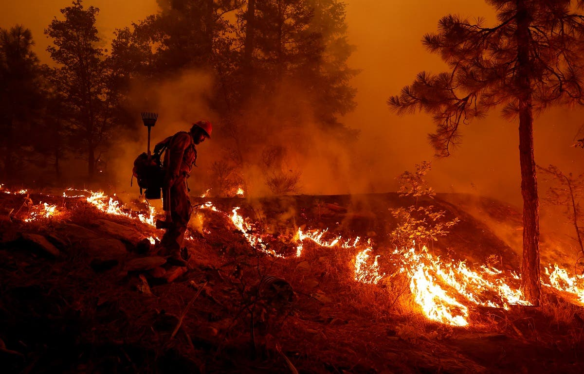 US Forest Service firefighter Ben Foley lights backfires to slow the spread of the Dixie Fire, a wildfire near the town of Greenville, California, U.S. August 6, 2021. (Reuters)
