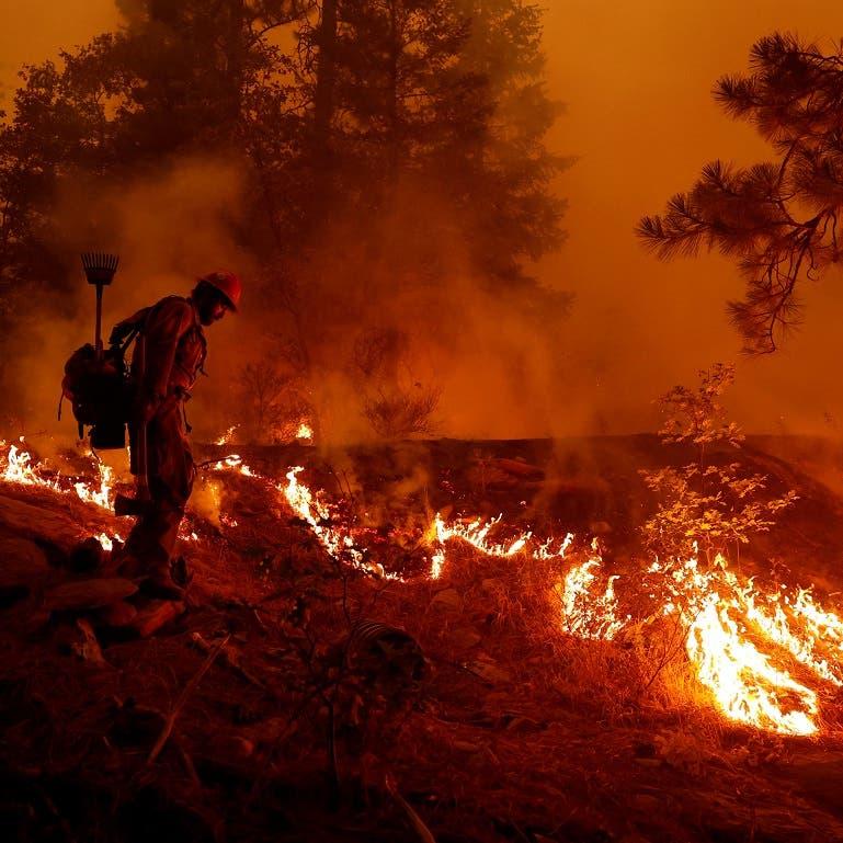 مزيج خطير.. دخان حرائق الغابات مرتبط بزيادة حالات كوفيد 19
