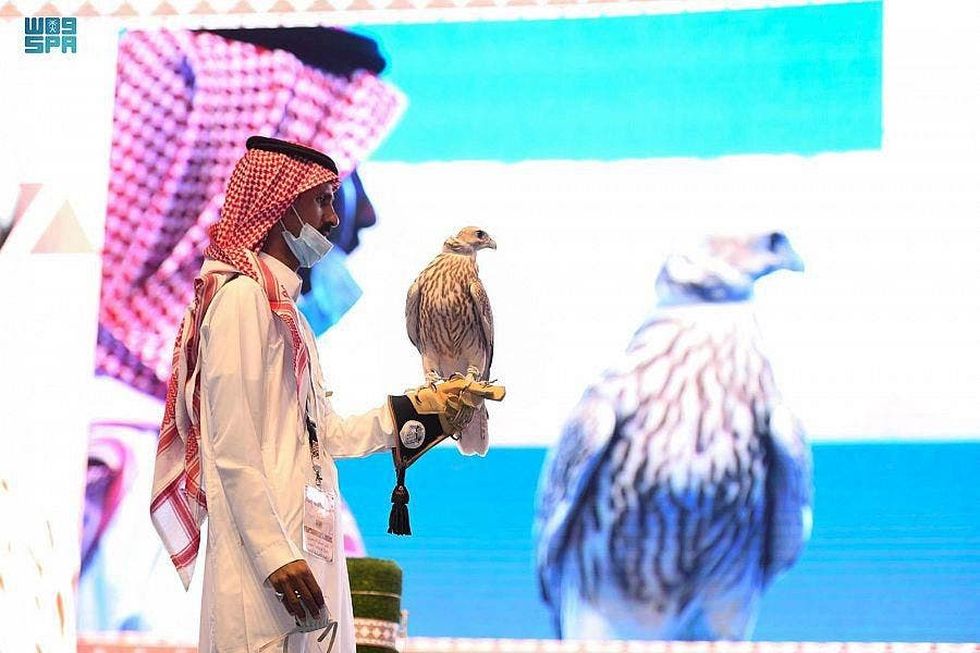 Falcons, whose flight speeds can exceed 300 km (186 miles) an hour, are recognized internationally as endangered. Countries have varying regulations governing their sale, capture, breeding and hunting activities. (SPA)
