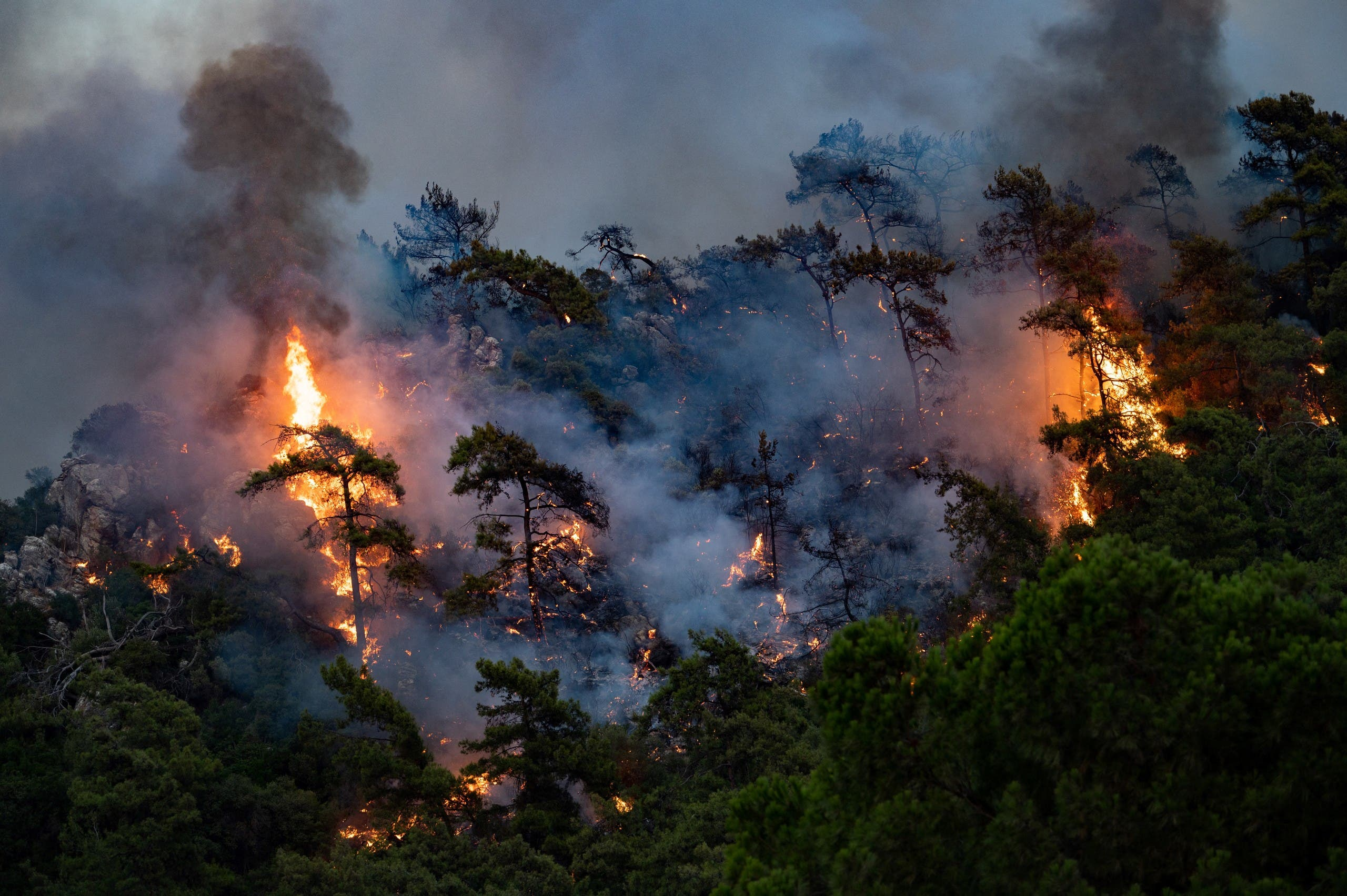 A wildfire burn trees on August 2, 2021 in Mugla, Marmaris district, as the European Union sent help to Turkey and volunteers joined firefighters in battling a week of violent blazes. (AFP)